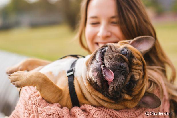 Adotar um cachorro é tudo de bom, mas você precisar ter certeza do que está fazendo