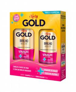 Kit Especial Niely Gold Brilho Absoluto Shampoo 300ml + Condicionador 200ml